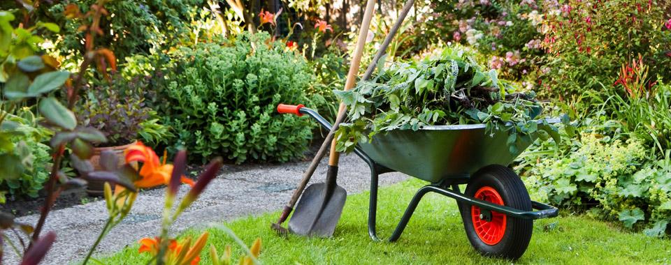 voor uw tuinonderhoud maakt u een afspraak met postcleaning.eu